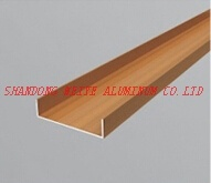 Aluminium Profile/Extruded Aluminum Product for Door