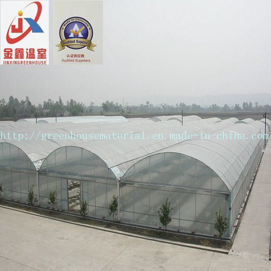 Commercial and Multi-Span Tunnel Greenhouse