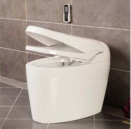 Hot Selling Luxury Intelligent Toilet (W1509)