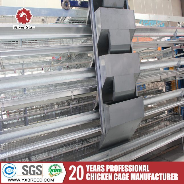 H Type Automatic Cages with Equipments