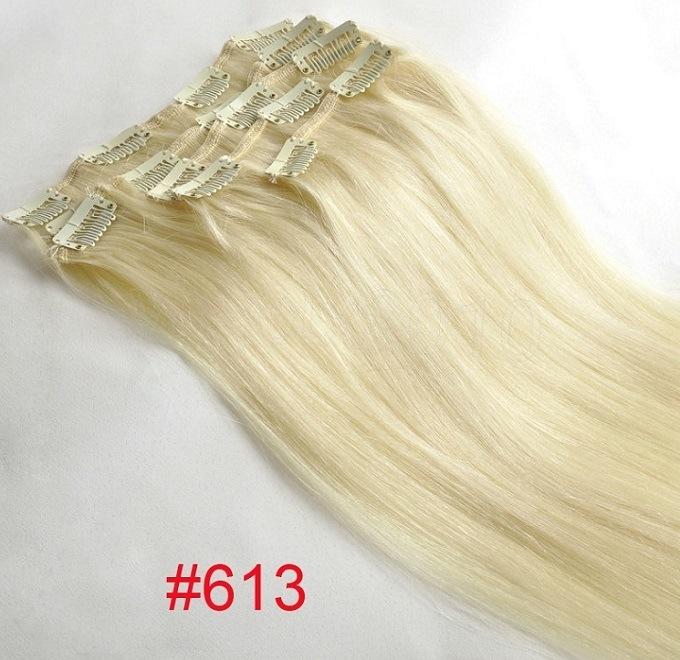 Remy Human Hair Clip Hair Extension