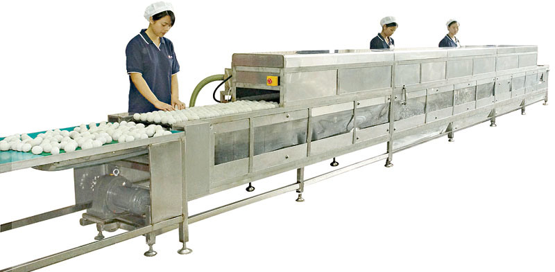 external image Cleaning-Drying-Spray-Filming-Machine-for-Preserved-Egg-MT-300-.jpg