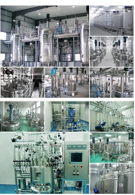 Laboratory Fermentation Tank