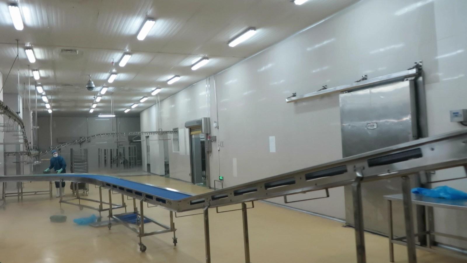 Flat Conveyor Psj1300 Weighing Food Machine
