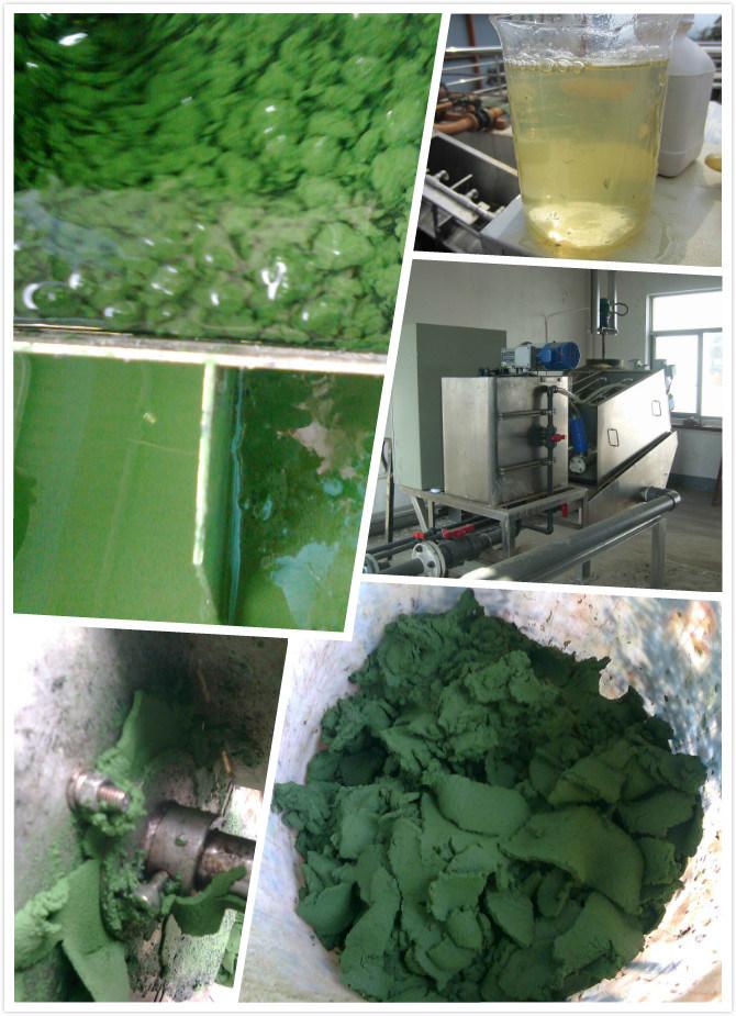 Top Manufacturer Screw Conveyor System for Sludge Dewatering
