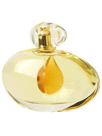 Women Perfume of Top Quality