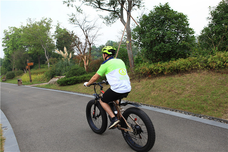 1000W Fat Electric Bicycle, Snow Electric Bicycle