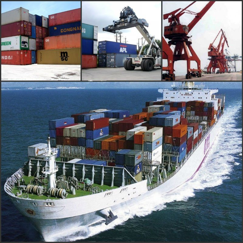 Container Sea Freight/Freight Forwarding Company to Dubai UAE