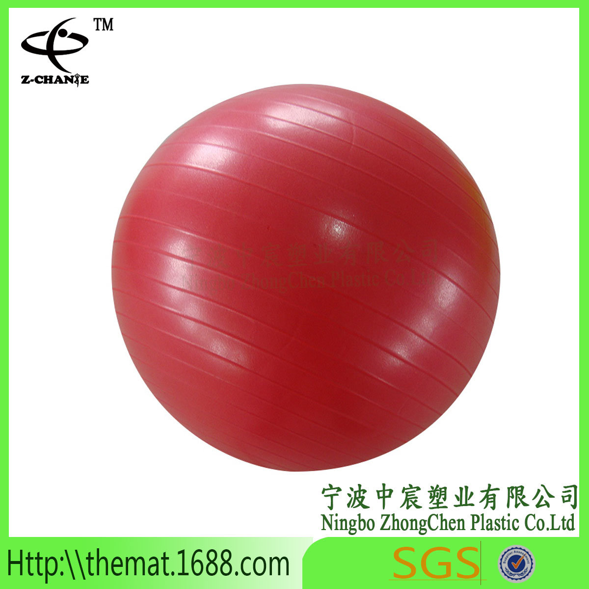 Exercise Ball with Pump and Ball Base Sale Fitness Yoga Pilates Ball