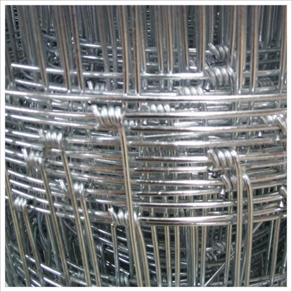 Filed Fence Wire Mesh