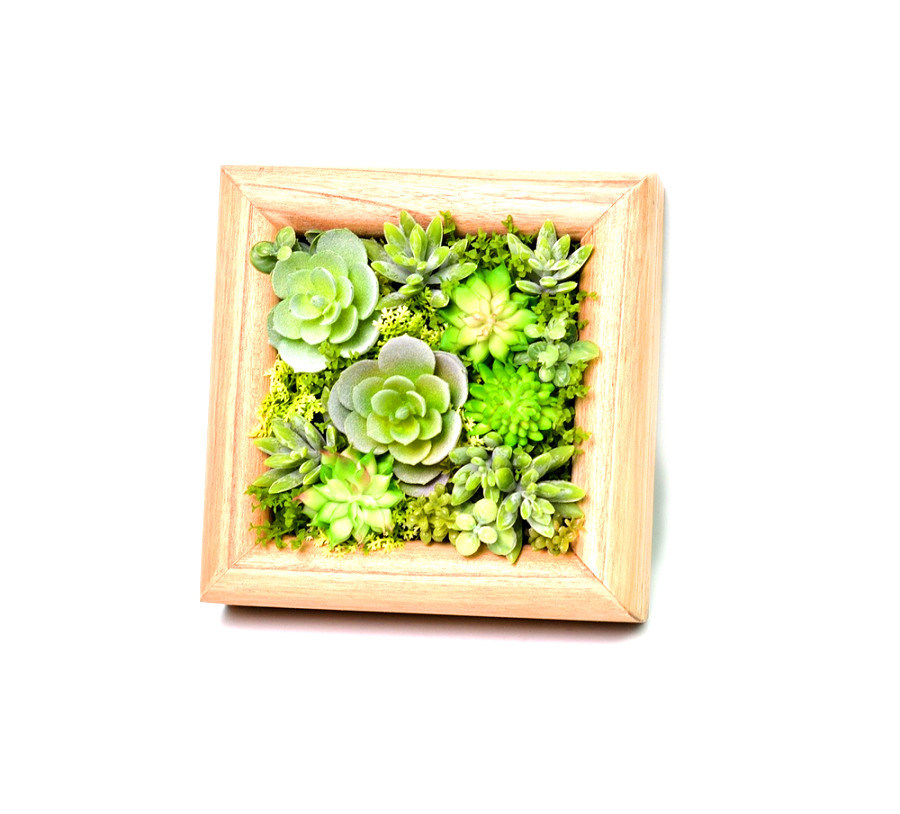 Wood Framed Wall Mounted Artificial Succulent Plant Arrangement Art Display