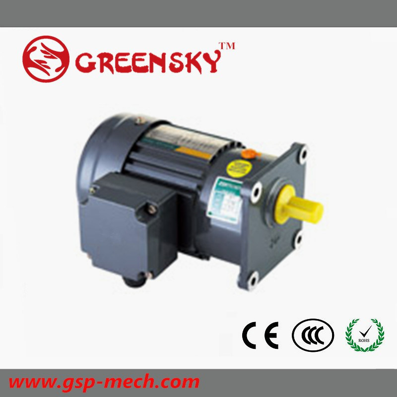 GS Hot Selling 500W Small Brake Gear Motor