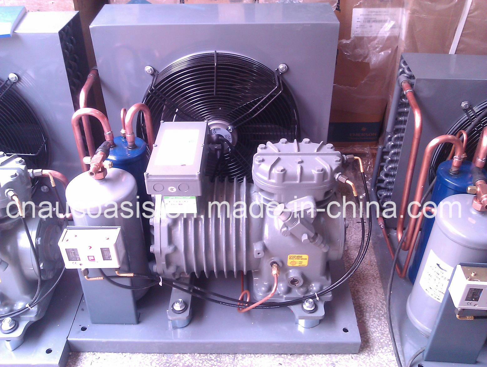 Dwm Copeland Semi-Hermetic Condensing Units Refrigeration for Freezer / Cold Storage