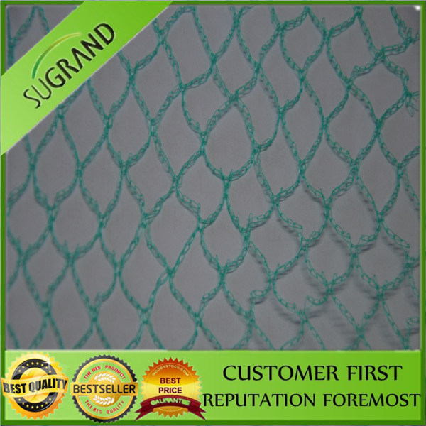 Agricultural HDPE Plastic Vineyard Anti Bird Netting for Sale