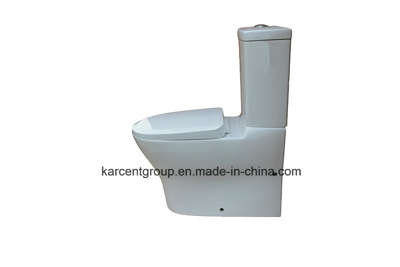 Two Piece Ceramic Toilet Ce Washdown Toilet Water Closet Wc 11812