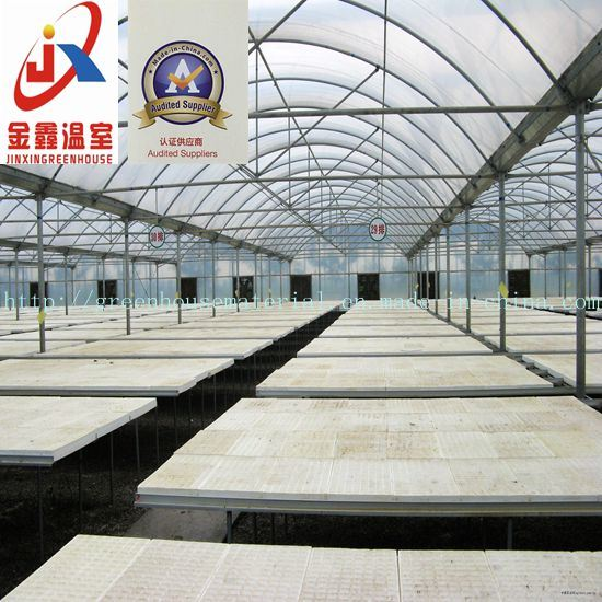 High-Quality Film Multi-Span Greenhouse, Arch-Type