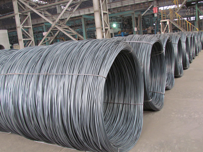 SAE1008 / 5.5mm Hot Rolled Steel Wire Rod