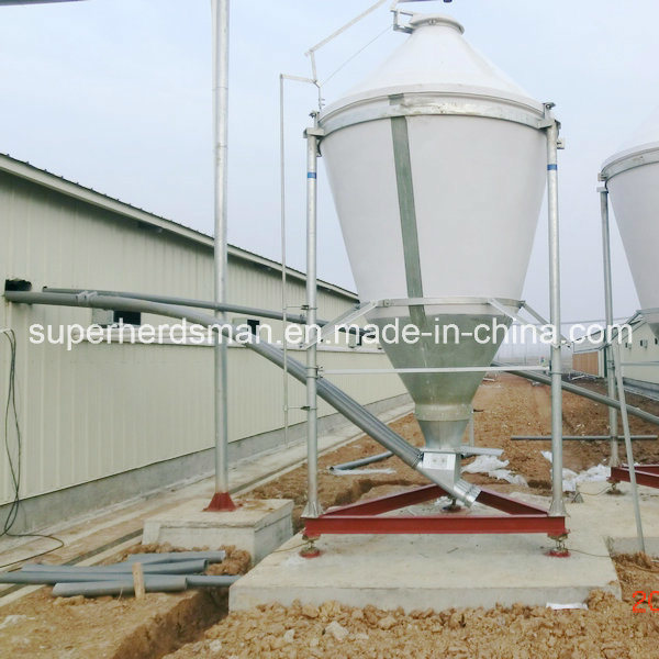 High Quality Automatic Silo System for Poultry House