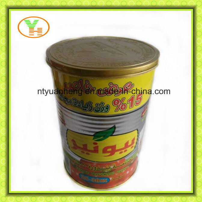Aseptic Canned Tomato Paste and Tomato Puree