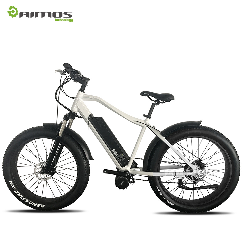 250W 1000W Fat Tire Electric Bicycle for Adult