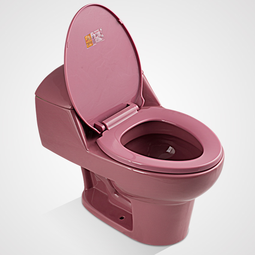 China Porcelain Colored Dual Button One Piece Toilet