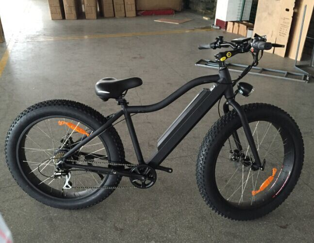 500W Power Motor Electric Fat Tire Bike with TUV Ce Certificate