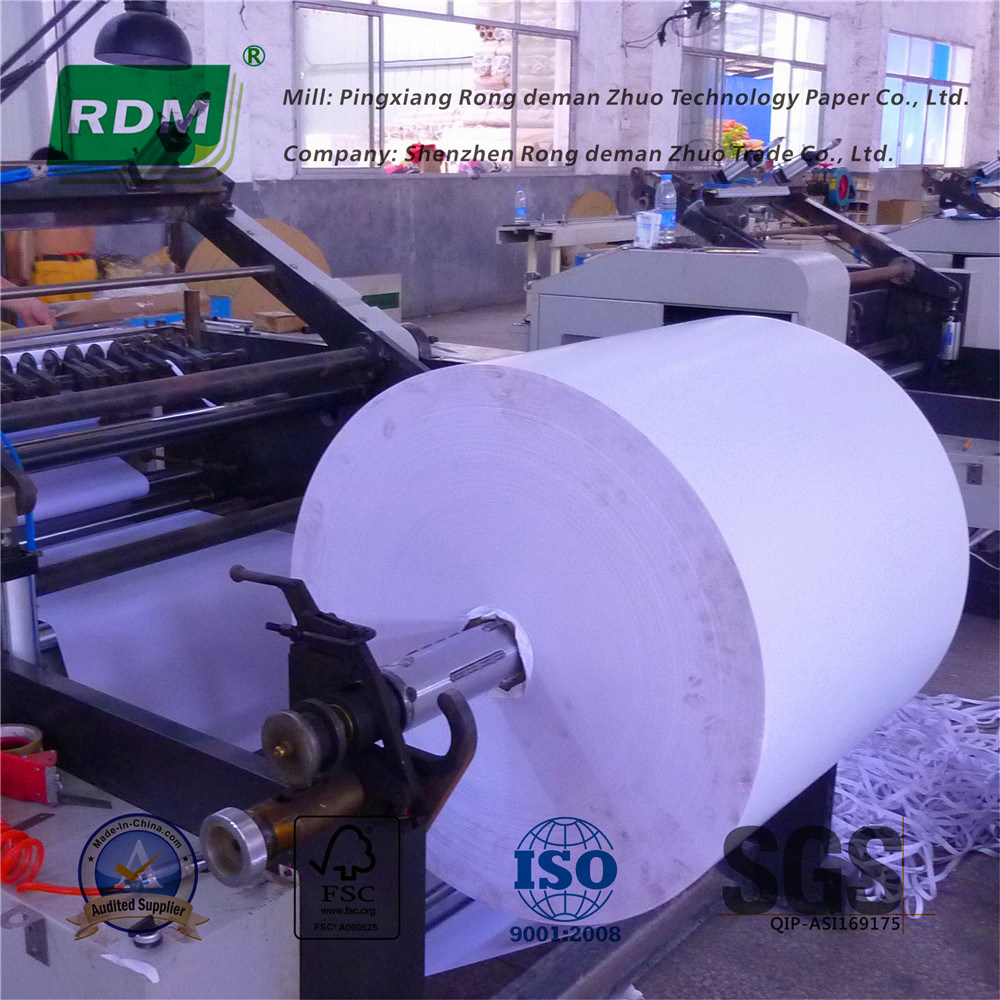 Jumbo Roll Thermal Printing Paper for Further Processing
