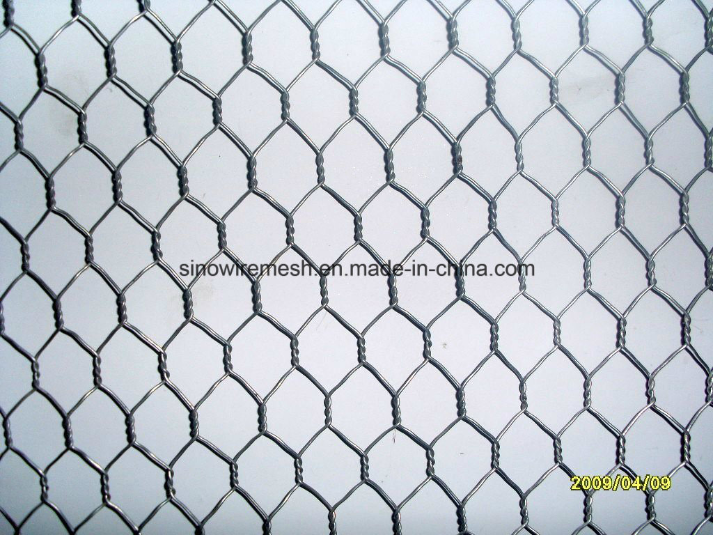 Heavy Type Galvanized Hexagonal Wire Netting Chicken Wire for Gabion