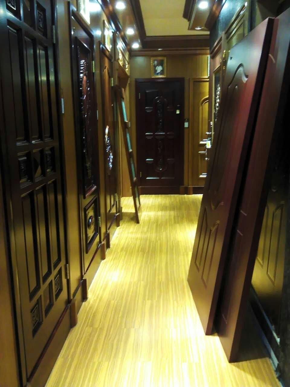 Modern Style Brown Steel Door for Exterior (SD-018)