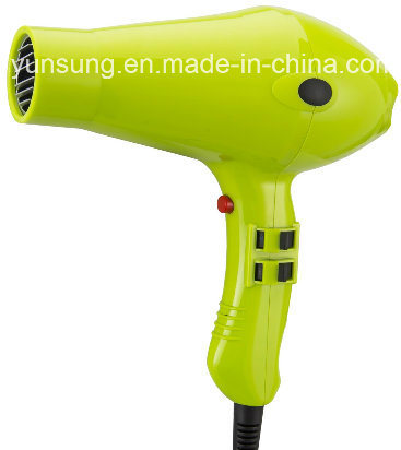 2017 2300W Professional Ionic Hair Dryer with Ce CB ETL