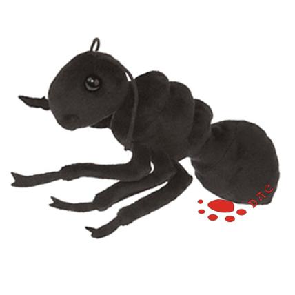 Ant Toys 43