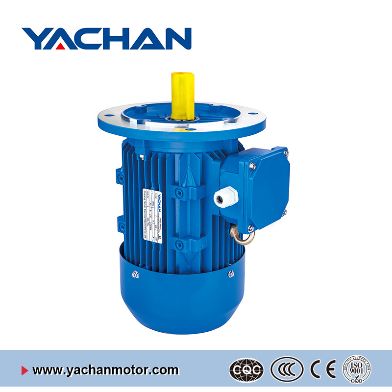 CE Approved Ms Series Aluminum Body Electric Motor