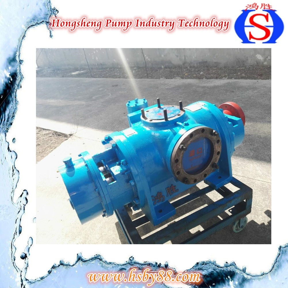 High Quality Double Screw Water Pump with Cheap Price