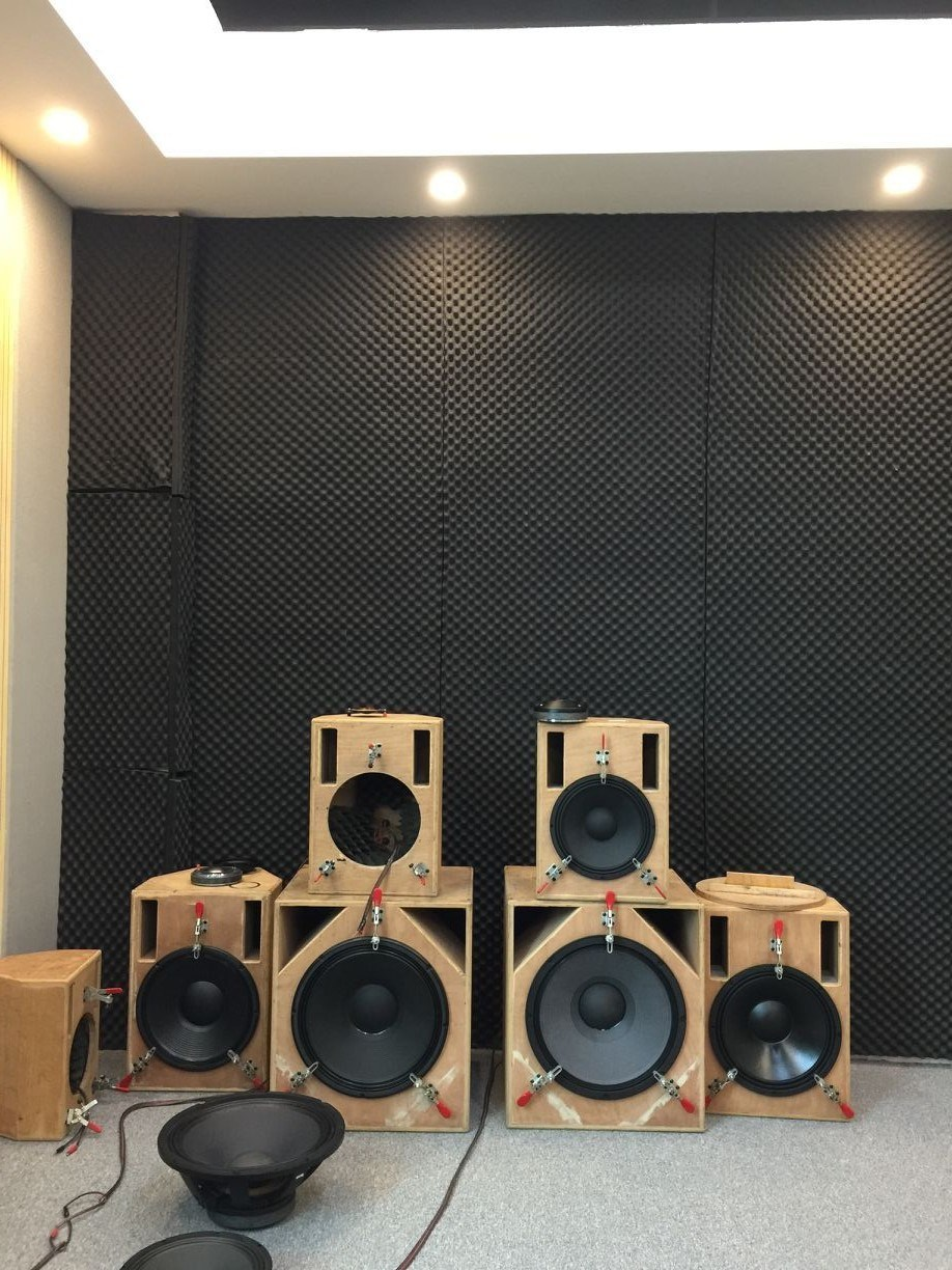 De250 PRO Sound System High Frequency Speaker Driver Audio