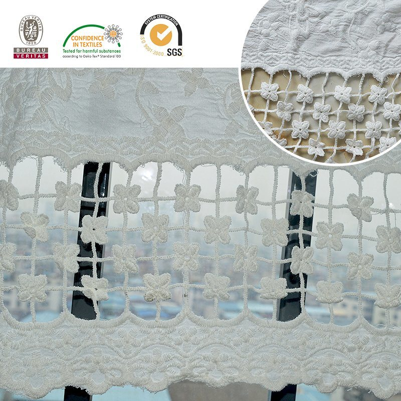 Mesh Lace Fabric, Swiss Embroidery Accessoriese30010
