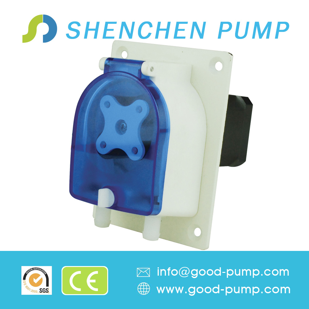 24V DC Motor OEM Peristaltic Pump