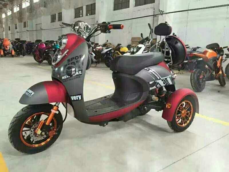 Three Wheel Electric Lady Shopping Trike Tricycle 800SL-3