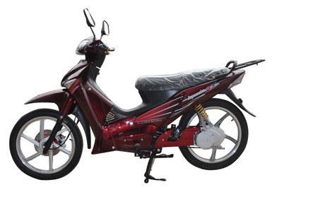 E-Bike (KSE800-1)
