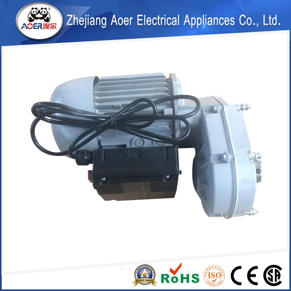 AC Reducer Gear Electric Motor