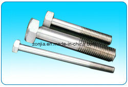Stainless Steel AISI 304/316 Bolt