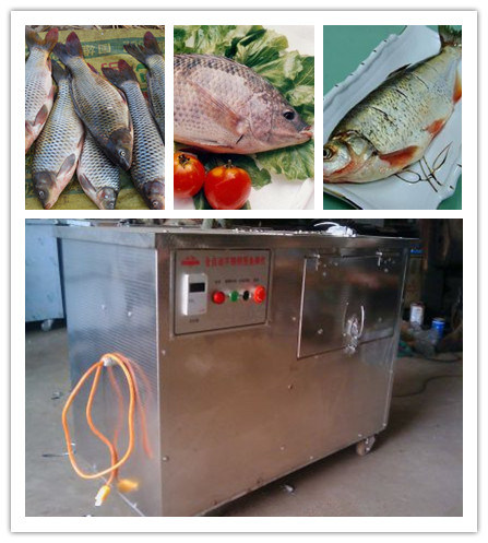 China Automatic Cleaning Fish Machine Made By Stainless