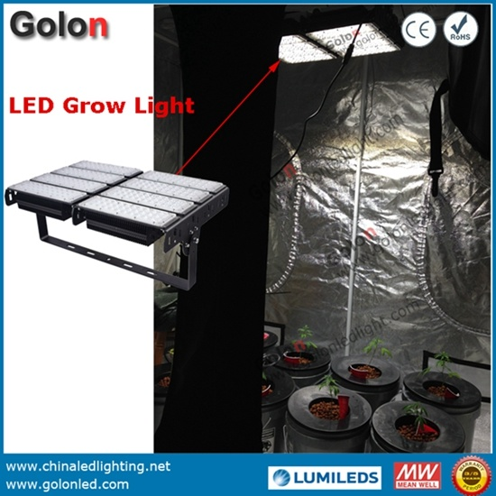 400W LED Flood Light for Plant Grow Light IP65 Waterproof Meanwell Driver UK/USA/Au/Plug