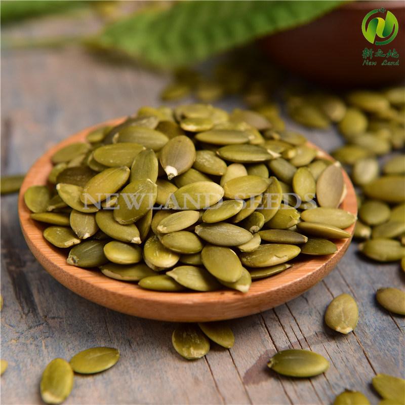 Inner Mongolia Pumpkin Seeds Kernels Grade a/AA with High Quality