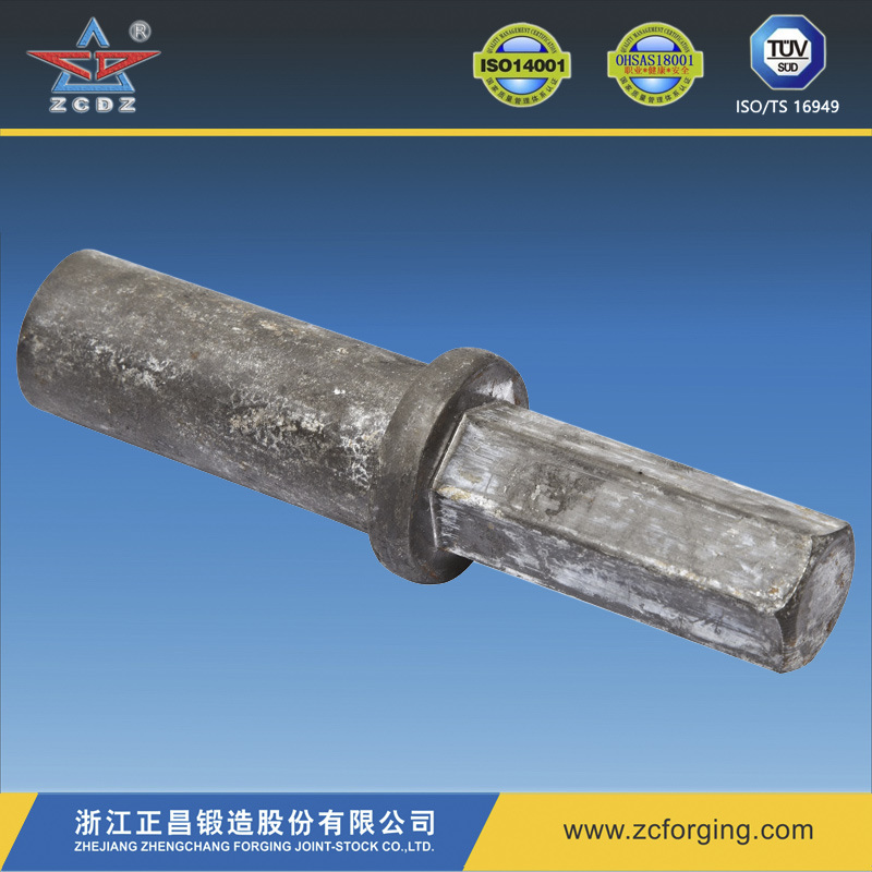 OEM Forging of Hot Forging/Steel Forging/Metal Forging