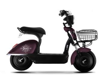 500W Drum Brake Two-Wheel Electric Scooter