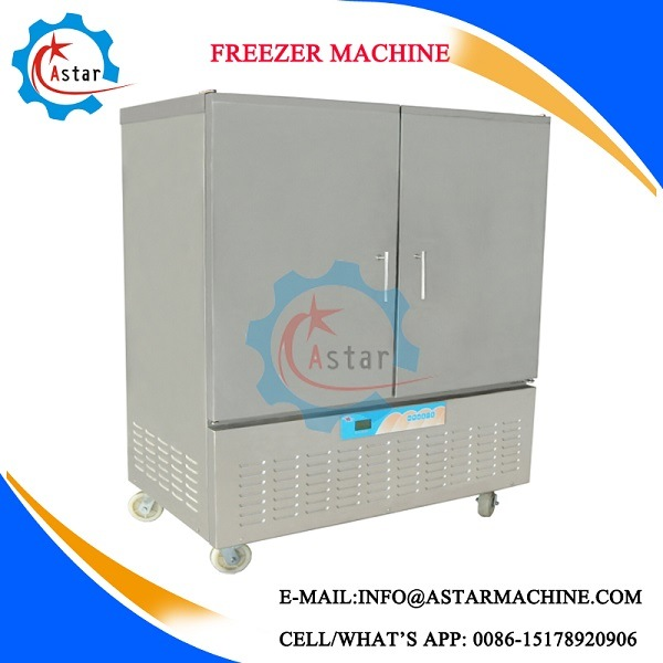 Fast Frozen Industrial Use Commercial Refrigerator