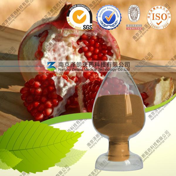 100% Natural Plant Extract Punica Granatum L. Pomegranate Extract Powder