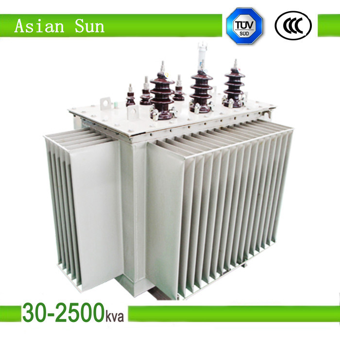 11kv Oil Cooled Oil-Immersed Power Transformer (250kVA)