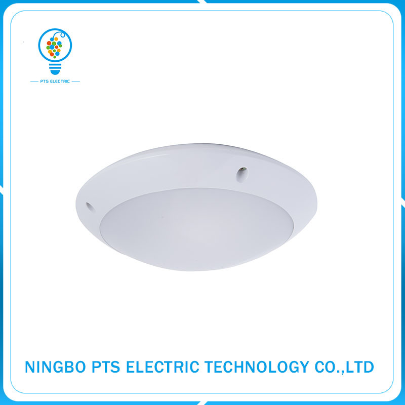 IP65 20W Good Sale Hotel LED Waterproof Ceiling Night Light with MP3