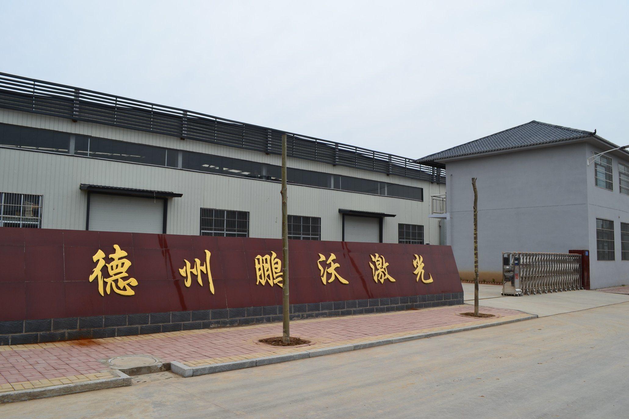 Pengwo Fiber Laser Cutting Machine for Metal
